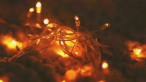 copper wire led string lights    string lights