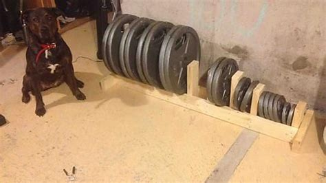 diy weight rack  home gym weight rack workout room home