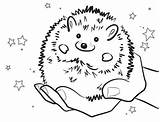 Hedgehog Pages Coloring Colouring Drawing Sonic Line Sheets Smiling Preschool Getdrawings Shadow Characters Saying Visit sketch template