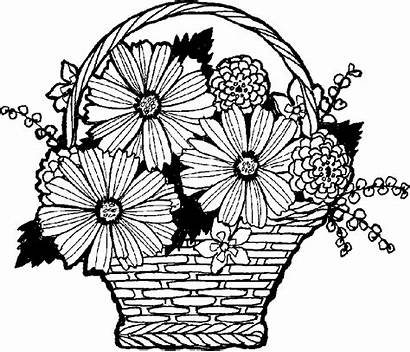 Vase Flowers Flower Drawing Clipart Line Vases
