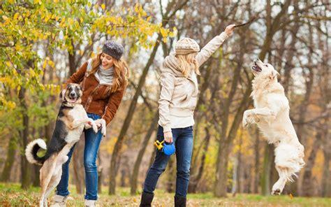 benefits  owning  dog