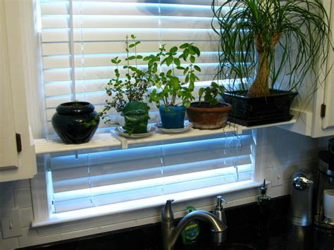 DIY Kitchen Plant Shelf ? NicholsNotes