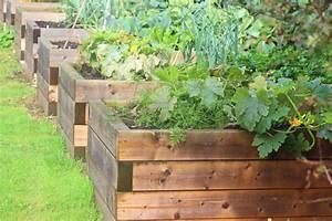 Hochbeet Holz Selber Bauen : hochbeet selber bauen vs hochbeet kaufen plantura ~ Buech-reservation.com Haus und Dekorationen