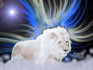 Black and White Lion wallpaper gallery | A World Gossip