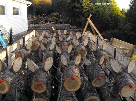 reindeer  pick woodchuckcanuckcom