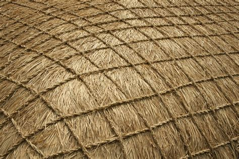 Free photo: Jeju, Straw, Seconds, Texture   Free Image on Pixabay   1054348