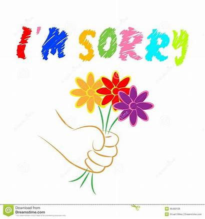 Sorry Flowers Apology Apologize Apologise Forgiveness Shows