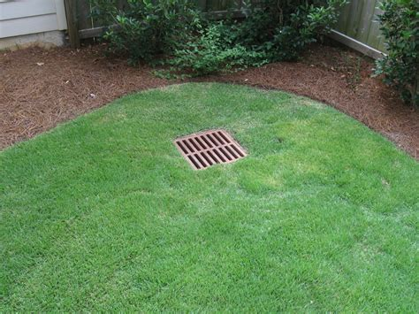 Backyard Drainage by Denver Lawn And Landscape Landscape Design And Lawn Care
