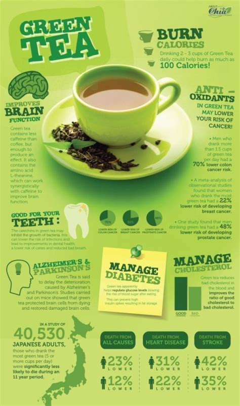 Drinking Green Tea Can Help You Lose Weight