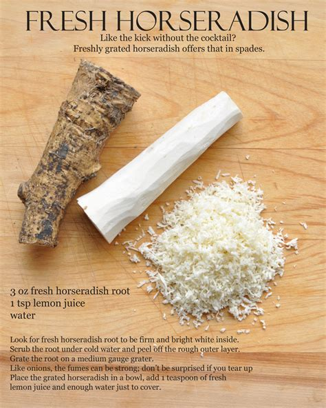 what is horseradish made from oysters part 3 sauces and garnishes former chef