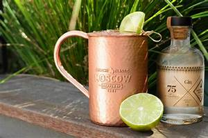 Moscow Mule Gin : gin moscow mule recipe make your mule with gin ~ Orissabook.com Haus und Dekorationen