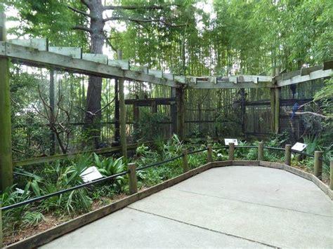bird aviaries aviary zoo birds patio cages circle backyard semi cat feeding central mon construction enclosure quail decor google tropical