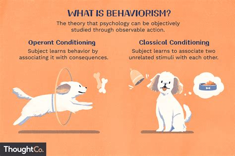 behaviorism  psychology definition theories