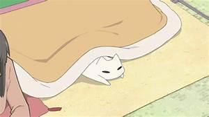 anime cat gif | Tumblr