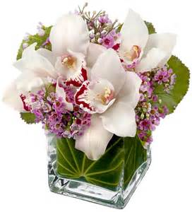 bridal hair and makeup san diego cymbidium orchids cube products local florist in san
