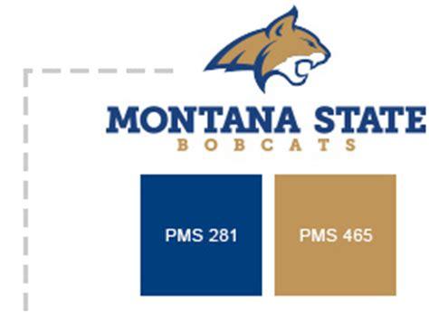 montana state colors msu brand guide msu brand guide montana state
