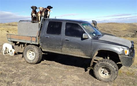hunting truck for sale new zealand working hilux the best stuff in the world