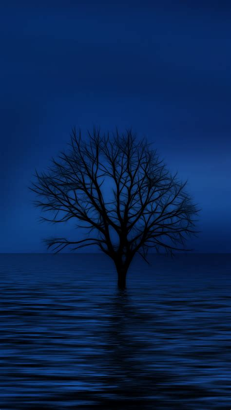 Ultra Hd Blue Tree Wallpaper For Your Mobile Phone 0338