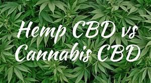 cannabidiol cbd buy