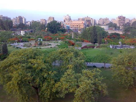 egypt   heaven images international garden  cairo hd