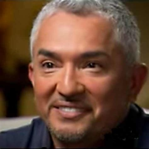video bitten  tragedy dog whisperer cesar millan
