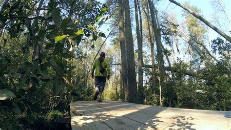 cheesequake state park green trail njhikingcom youtube