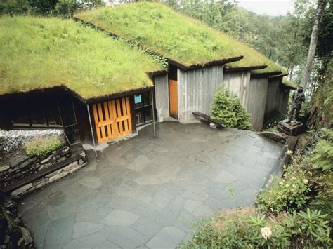 eco green roof how to plant and install ecoroofs hgtv