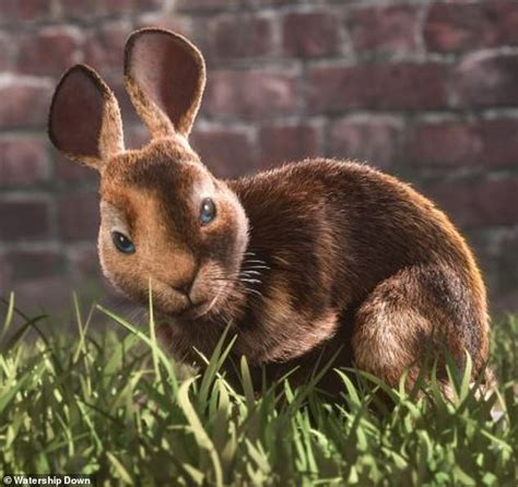 watership down clover role cgi he lived hutch prepare jokes weeks five did