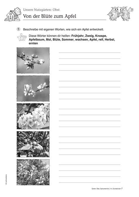 Der Garten Unterrichtsmaterial by Arbeitsbl 228 Tter 183 Grundschule 183 Lehrerb 252 Ro