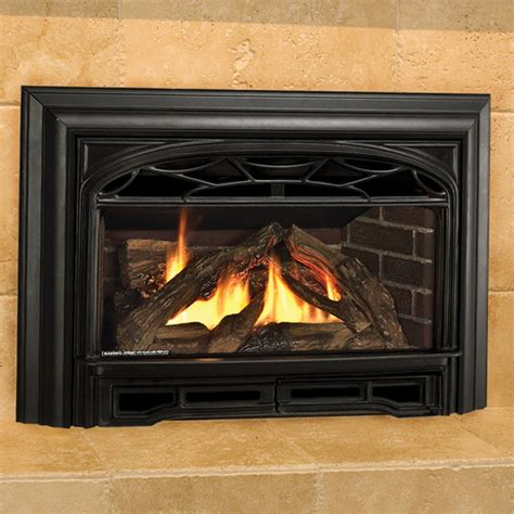 propane fireplace insert propane gas log fireplace inserts fireplaces the fyre
