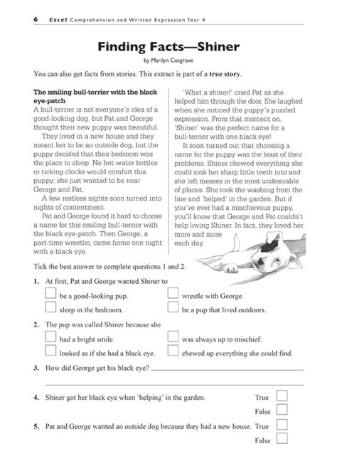 excel basic skills comprehension  written expression
