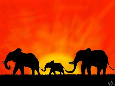 elephant silhouette sunset painting elephants sunset sunset