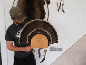 how to make a turkey fan mount With turkey fan mount template