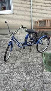 Fahrradbox Für 2 Fahrräder : gebrauchte dreir der mit zwei r dern hinten dreirad f r erwachsene ~ Whattoseeinmadrid.com Haus und Dekorationen
