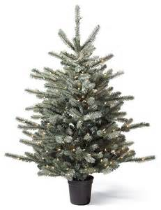 pre lit colorado blue spruce artificial tabletop tree traditional christmas trees by frontgate