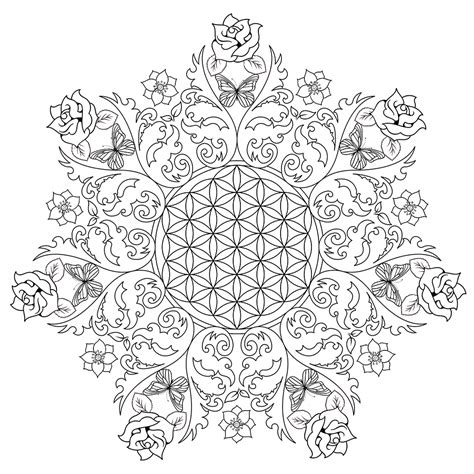 flower coloring pages  adults  coloring pages  kids