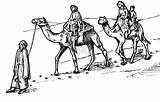 Camel Caravan Coloring Pages Drawings Bestofcoloring 657px 4kb 1024 sketch template