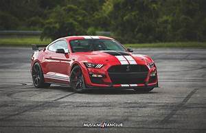 2021 Shelby GT500 Color Options | Mustang Fan Club