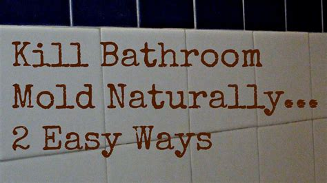 How To Get Rid Of Bathroom Mold Naturally 2 Ways To Kill