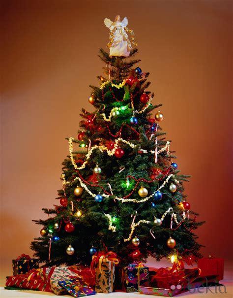 193 rbol de navidad a todo color fotos de navidad en bekia