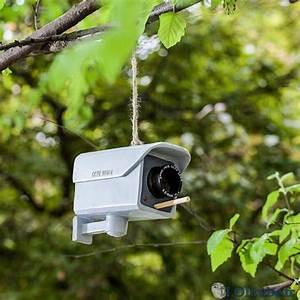 Caméra De Sécurité : une cam ra de s curit r utilis e images dr les loltube ~ Melissatoandfro.com Idées de Décoration