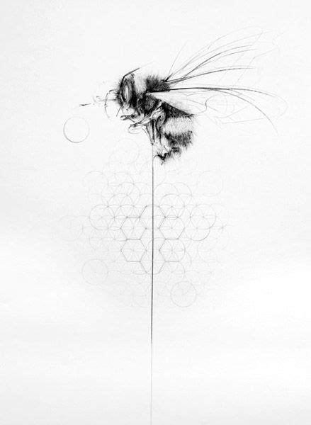 Pin by My Info on art/drawings | Bumble bee tattoo, Bee tattoo, Honey bee tattoo