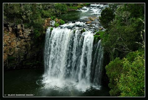 Ebor Waterfall Backgrounds by 85 Best Australian Waterfalls Images On