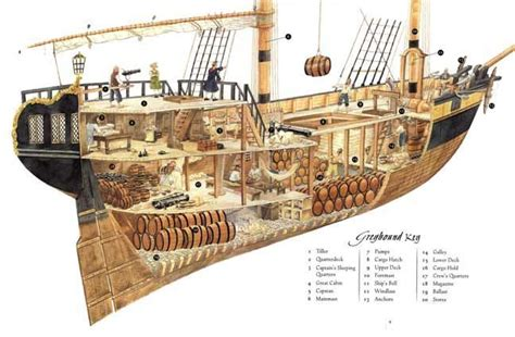 Parts Of A Wood Boat by Parts Of A Pirate Ship Diagram For Pirate Diary