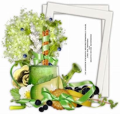 Fruit Garden Cluster Kits