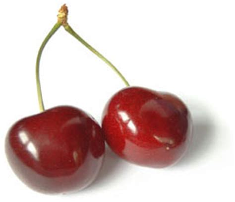 cuisiner sans sucre la cerise un fruit de saison à déguster sans tarder