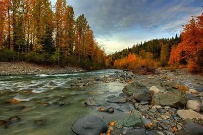 Alaska Stream Forest Fall Wallpapers Nature Autumn