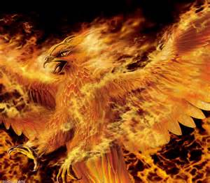 Phoenix Bird of Fire