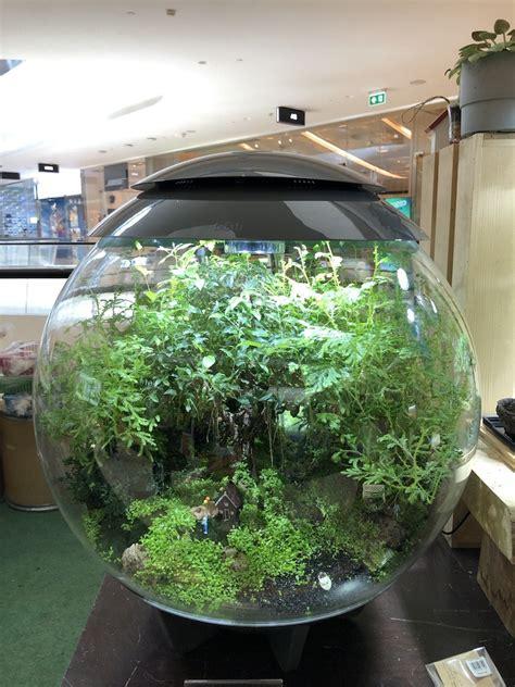 บริการรับจดสวนในขวดแก้วจำลอง   laddagardenshops