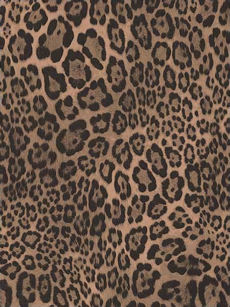 Leopard Print Wallpaper G67461 By Norwall Wallpaper